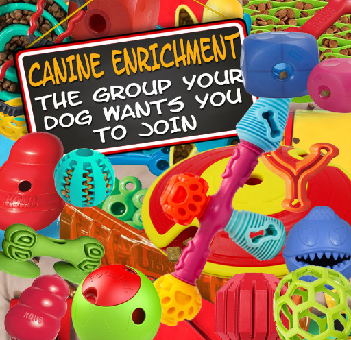 THE GROUP YOUR DOG WANTS YOU TO JOIN